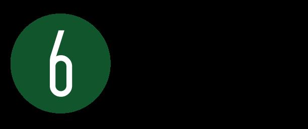 Dandy logo 2